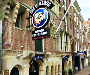 The Bulldog Hotel Amsterdam hostel